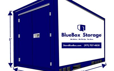 Introducing New Portable Storage Sizes